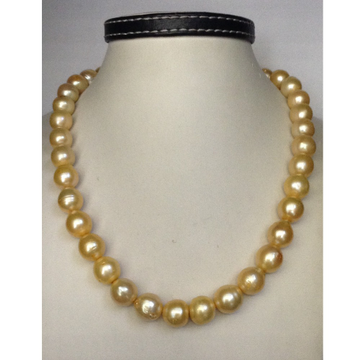 South sea water natural golden graded pearls neckl...
