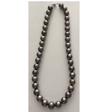 Grey tahitian south sea pearls strand