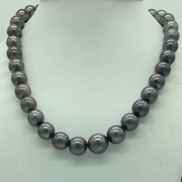 Grey Round Tahitian South Sea Pearls Strand JPM040...