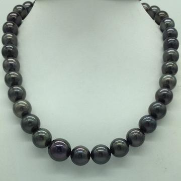 Black Round Tahitian South Sea Pearls Strand JPM04...