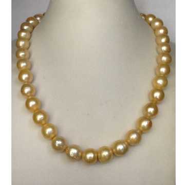 Freshwater golden round natural pearls strand