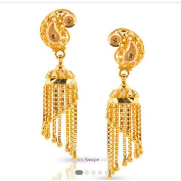 22 CT Fancy Earrings