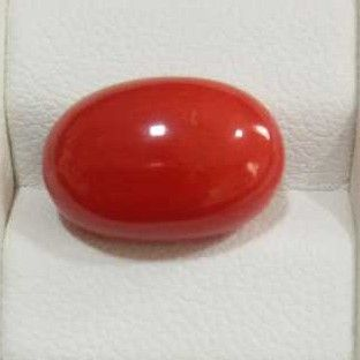 8.09ct oval red red-coral-mungaa