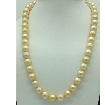 Golden Round South Sea Pearls Strand JPM0410